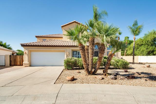1908 E Olive Court, Gilbert, AZ 85234 (MLS #5943644) :: The Pete Dijkstra Team
