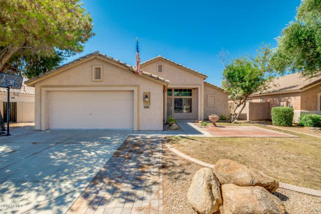 2382 E Torrey Pines Lane, Chandler, AZ 85249 (MLS #5943647) :: The Pete Dijkstra Team
