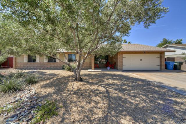 4439 W Bloomfield Road, Glendale, AZ 85304 (MLS #5943656) :: Openshaw Real Estate Group in partnership with The Jesse Herfel Real Estate Group