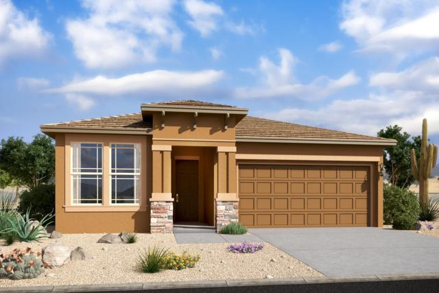 17280 W Kendall Street, Goodyear, AZ 85338 (MLS #5943658) :: Openshaw Real Estate Group in partnership with The Jesse Herfel Real Estate Group