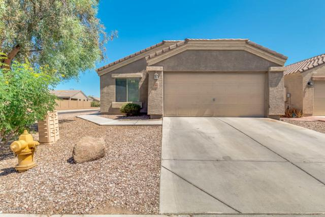 23932 W Hidalgo Avenue, Buckeye, AZ 85326 (MLS #5943672) :: CC & Co. Real Estate Team