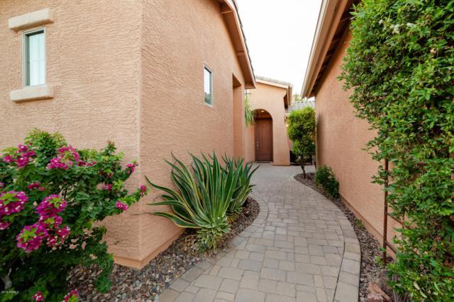 42772 W Kingfisher Drive, Maricopa, AZ 85138 (MLS #5943675) :: The Pete Dijkstra Team