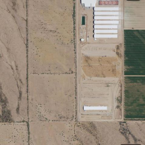 0 W Thomas Road, Tonopah, AZ 85354 (MLS #5943702) :: CC & Co. Real Estate Team