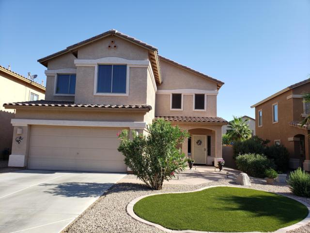 44408 W Knauss Drive, Maricopa, AZ 85138 (MLS #5943724) :: Power Realty Group Model Home Center