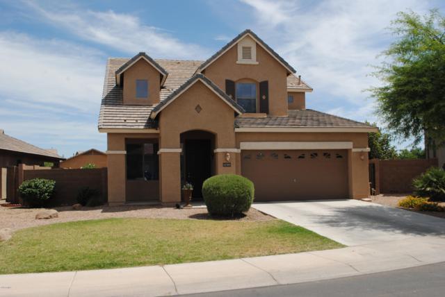 41588 W Avella Drive, Maricopa, AZ 85138 (MLS #5943731) :: Power Realty Group Model Home Center
