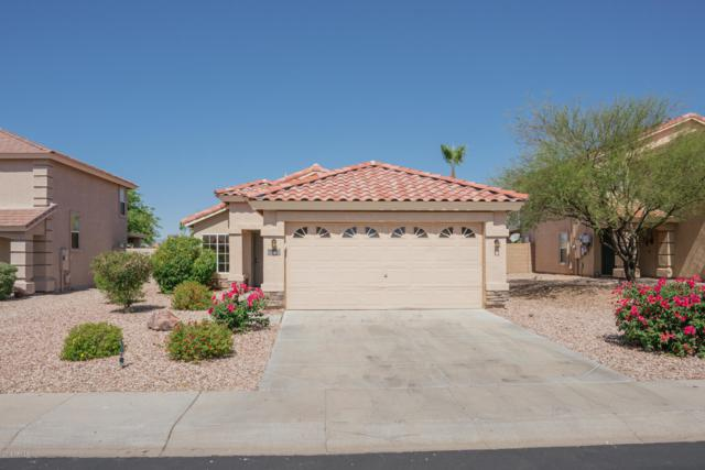 994 S 223RD Lane, Buckeye, AZ 85326 (MLS #5943748) :: The Laughton Team