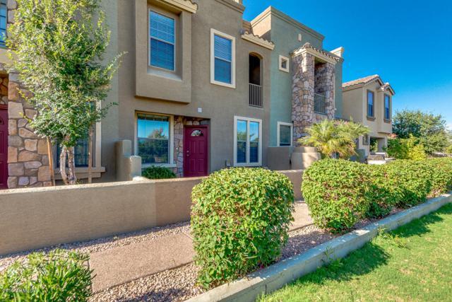 6710 E University Drive #171, Mesa, AZ 85205 (MLS #5943756) :: The Laughton Team