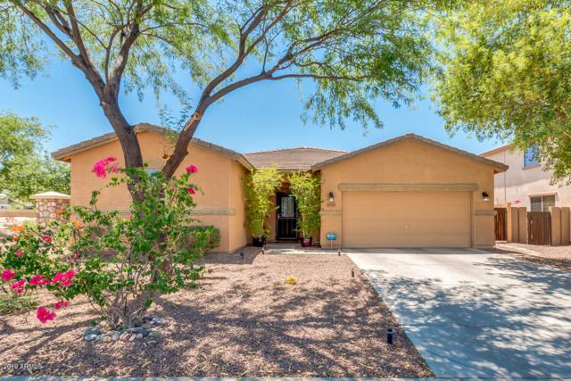 34374 N Appaloosa Way, Queen Creek, AZ 85142 (MLS #5943800) :: The Pete Dijkstra Team