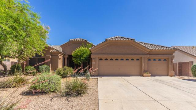 4927 E Apache Rain Road, Cave Creek, AZ 85331 (MLS #5943816) :: The Property Partners at eXp Realty
