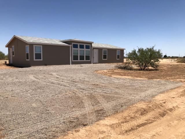 29005 N Begonia Lane, Florence, AZ 85132 (MLS #5943818) :: Openshaw Real Estate Group in partnership with The Jesse Herfel Real Estate Group