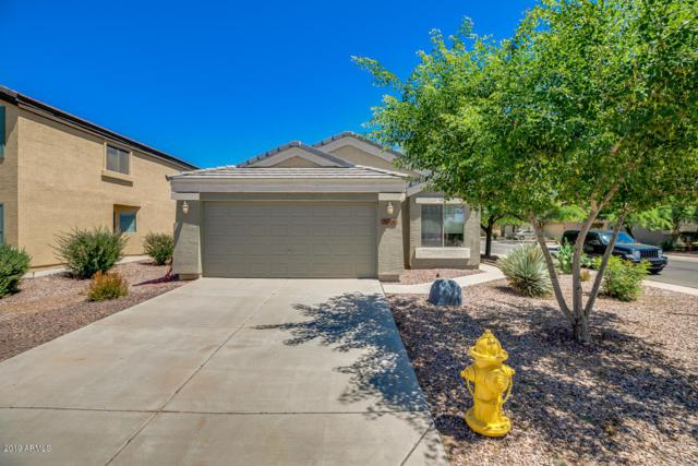 36508 W San Clemente Street, Maricopa, AZ 85138 (MLS #5943820) :: The Pete Dijkstra Team
