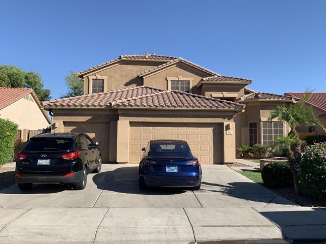 707 W Hemlock Way, Chandler, AZ 85248 (MLS #5943853) :: Power Realty Group Model Home Center