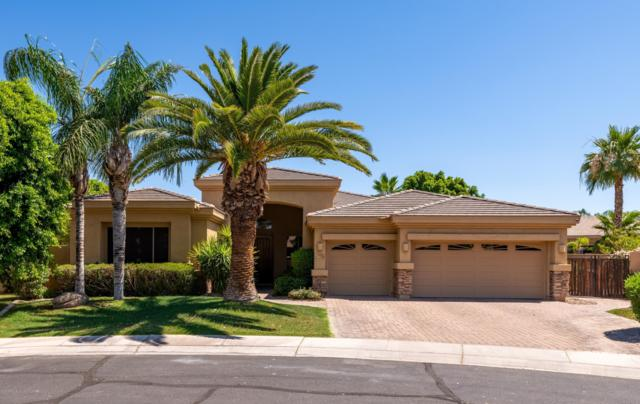 1726 W Kaibab Drive, Chandler, AZ 85248 (MLS #5943855) :: Power Realty Group Model Home Center