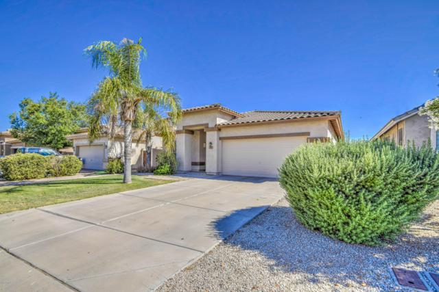 17 E Macaw Court, San Tan Valley, AZ 85143 (MLS #5943879) :: The Property Partners at eXp Realty