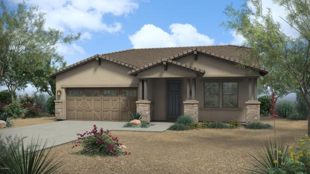 2398 N Acacia Way, Buckeye, AZ 85396 (MLS #5943890) :: The Kenny Klaus Team