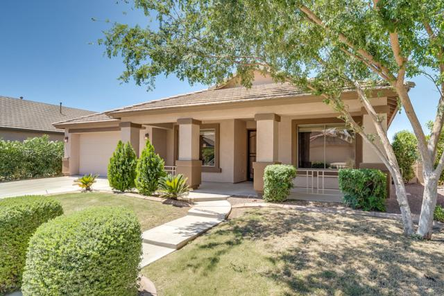 42276 W Chisholm Drive, Maricopa, AZ 85138 (MLS #5943896) :: Revelation Real Estate