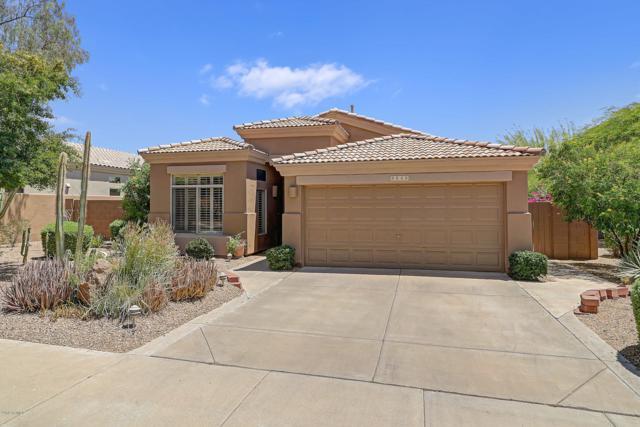 8849 E Calle Buena Vista Vista, Scottsdale, AZ 85255 (MLS #5943923) :: Homehelper Consultants
