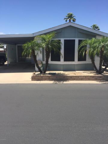 5735 E Mcdowell Road #323, Mesa, AZ 85215 (MLS #5943936) :: Homehelper Consultants