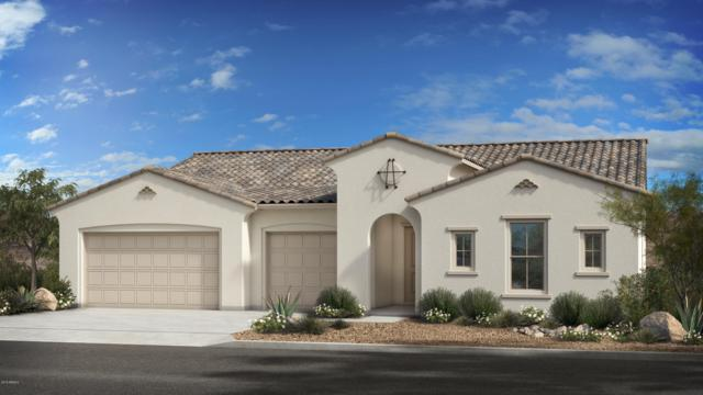 3011 E Cashman Drive, Phoenix, AZ 85050 (MLS #5943949) :: The Property Partners at eXp Realty