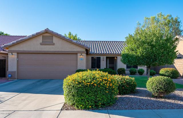 9256 W Purdue Avenue, Peoria, AZ 85345 (MLS #5943960) :: Openshaw Real Estate Group in partnership with The Jesse Herfel Real Estate Group