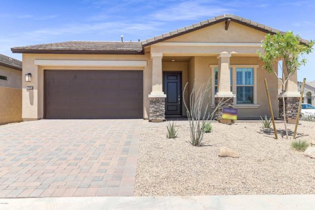 6632 E Libby Street, Phoenix, AZ 85054 (MLS #5943975) :: The Property Partners at eXp Realty