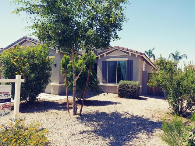 10814 W Monroe Street W, Avondale, AZ 85323 (MLS #5944001) :: Phoenix Property Group