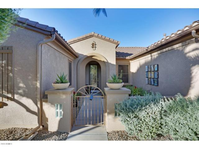 18635 N Paloma Court, Surprise, AZ 85387 (MLS #5944015) :: Kepple Real Estate Group