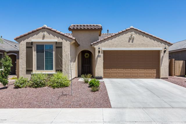 9540 W Chama Drive, Peoria, AZ 85383 (MLS #5944021) :: The Kenny Klaus Team