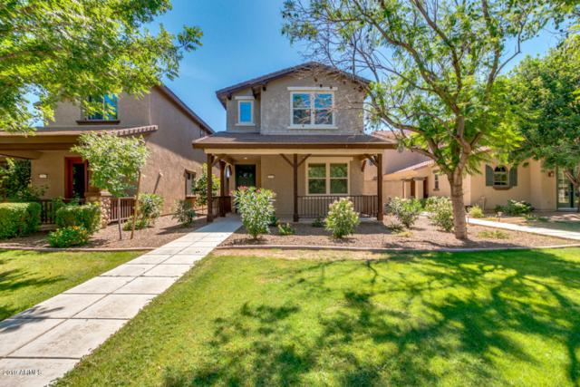 13274 N Founders Park Boulevard, Surprise, AZ 85379 (MLS #5944030) :: Openshaw Real Estate Group in partnership with The Jesse Herfel Real Estate Group