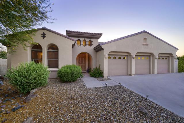 877 W Grove Street, Litchfield Park, AZ 85340 (MLS #5944043) :: The Kenny Klaus Team
