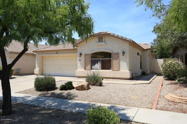 3922 E Potter Drive, Phoenix, AZ 85050 (MLS #5944086) :: Openshaw Real Estate Group in partnership with The Jesse Herfel Real Estate Group