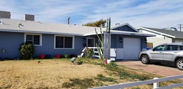 4056 N 80TH Drive, Phoenix, AZ 85033 (MLS #5944099) :: Power Realty Group Model Home Center