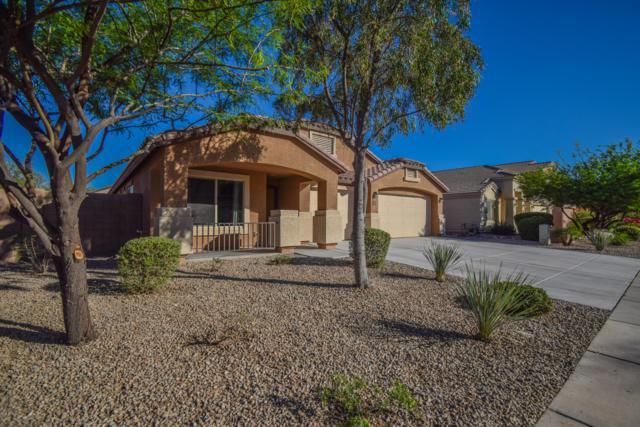37157 W Leonessa Avenue, Maricopa, AZ 85138 (MLS #5944122) :: Power Realty Group Model Home Center