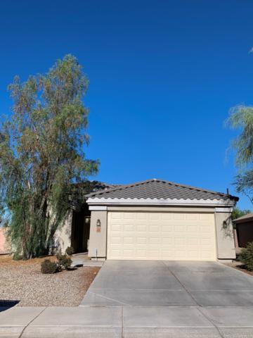 4209 N 123RD Drive, Avondale, AZ 85392 (MLS #5944133) :: Phoenix Property Group