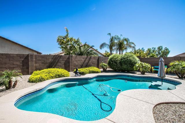 41820 W Chambers Court, Maricopa, AZ 85138 (MLS #5944191) :: Lucido Agency