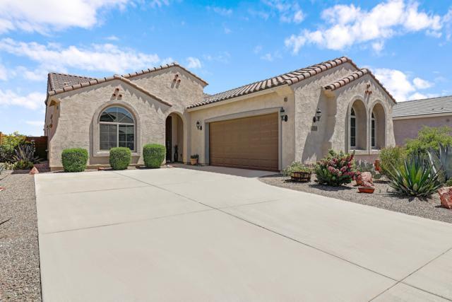 25974 W Tonopah Drive, Buckeye, AZ 85396 (MLS #5944196) :: The Property Partners at eXp Realty