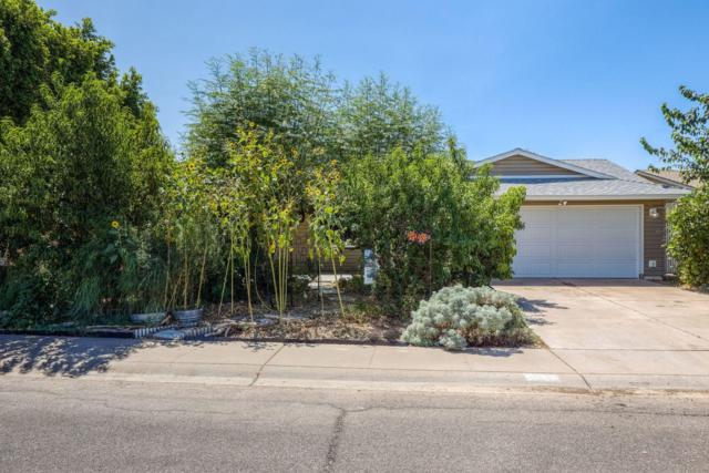 1029 E Carter Drive, Tempe, AZ 85282 (MLS #5944212) :: Brett Tanner Home Selling Team