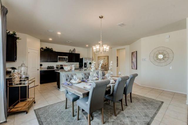 17829 N Nocera Road, Maricopa, AZ 85138 (MLS #5944218) :: Lucido Agency