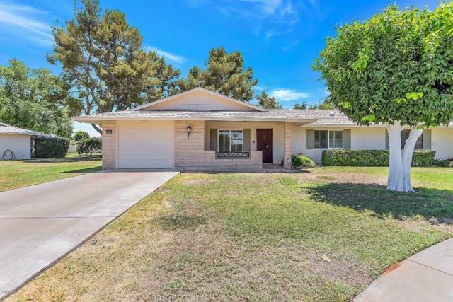 10913 W Caron Drive, Sun City, AZ 85351 (MLS #5944223) :: Kepple Real Estate Group