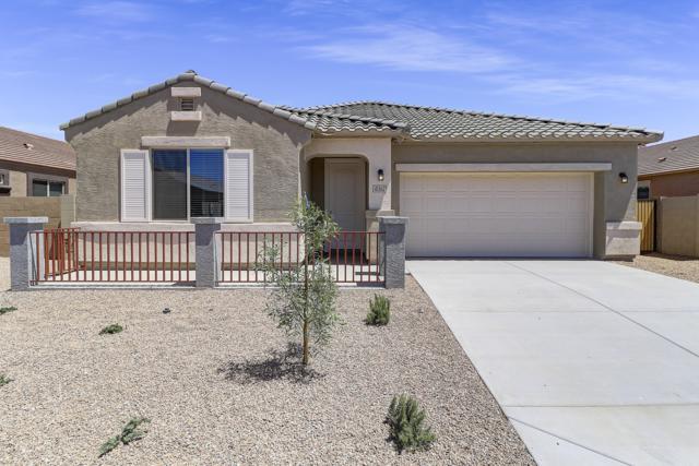 41362 W Ganley Way, Maricopa, AZ 85138 (MLS #5944231) :: Lucido Agency