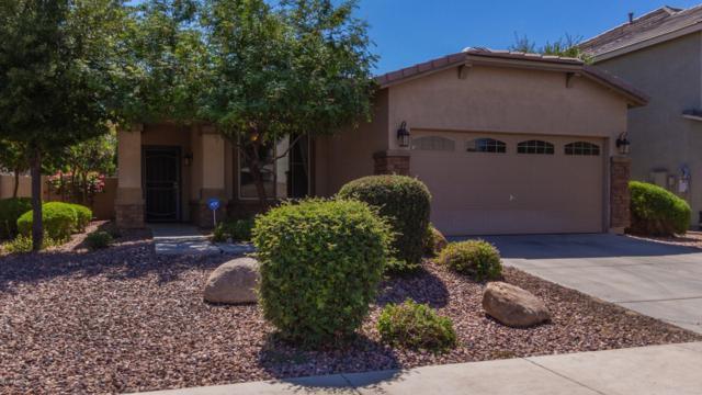 9419 N 183RD Lane, Waddell, AZ 85355 (MLS #5944249) :: CC & Co. Real Estate Team