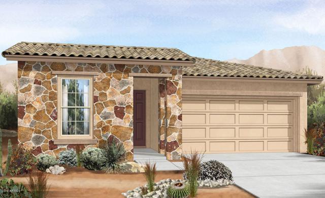 29872 N 115TH Glen, Peoria, AZ 85383 (#5944273) :: Gateway Partners | Realty Executives Tucson Elite