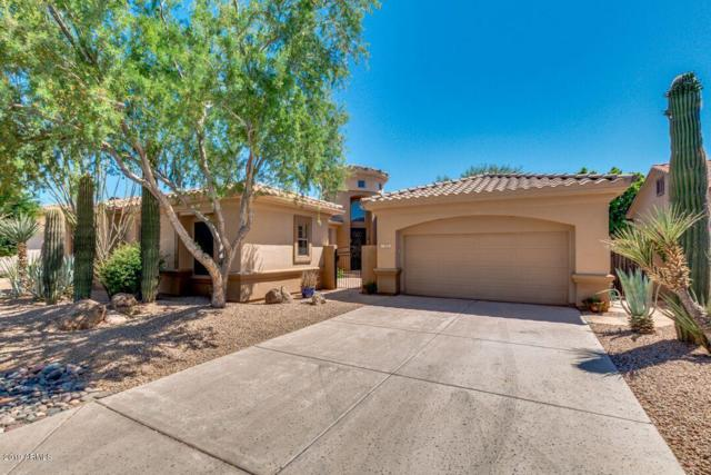 7695 E Manana Drive, Scottsdale, AZ 85255 (MLS #5944279) :: The Laughton Team