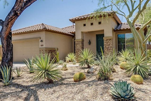 29968 N 72ND Lane, Peoria, AZ 85383 (MLS #5944291) :: CC & Co. Real Estate Team
