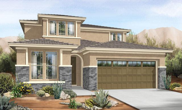 11481 W Nadine Way, Peoria, AZ 85383 (MLS #5944299) :: Lucido Agency