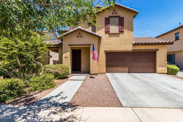 3518 E Carla Vista Drive, Gilbert, AZ 85295 (MLS #5944310) :: CANAM Realty Group