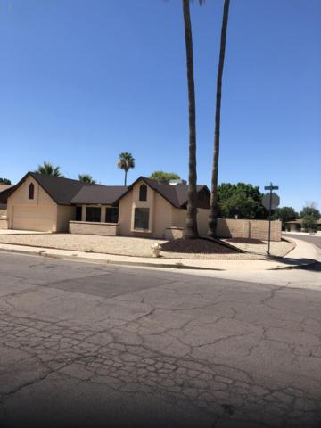 6004 W Kings Avenue, Glendale, AZ 85306 (MLS #5944335) :: The Laughton Team