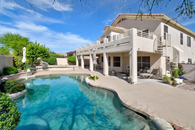4515 E Via Montoya Drive, Phoenix, AZ 85050 (MLS #5944336) :: The Laughton Team
