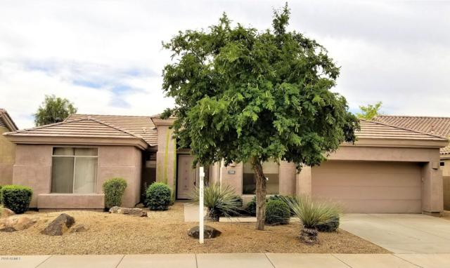 7269 E Wingspan Way, Scottsdale, AZ 85255 (MLS #5944339) :: The Laughton Team