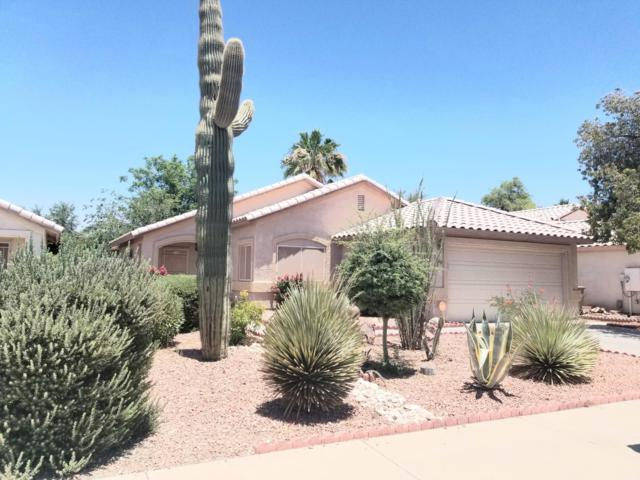 16110 W Washington Street, Goodyear, AZ 85338 (MLS #5944357) :: Phoenix Property Group
